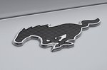 Ford Mustang Mach-E RWD 2021 badge