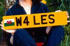 National flags on numberplates illegal