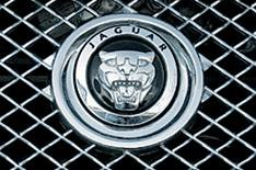 Jaguar suspends work