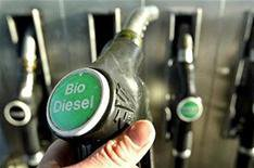New fungus biofuel