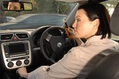 Lauren is most accident-prone driver