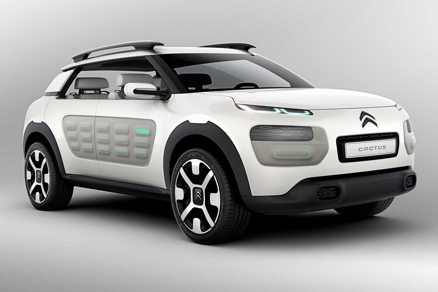 Citroen C4 Cactus 'first of a family'