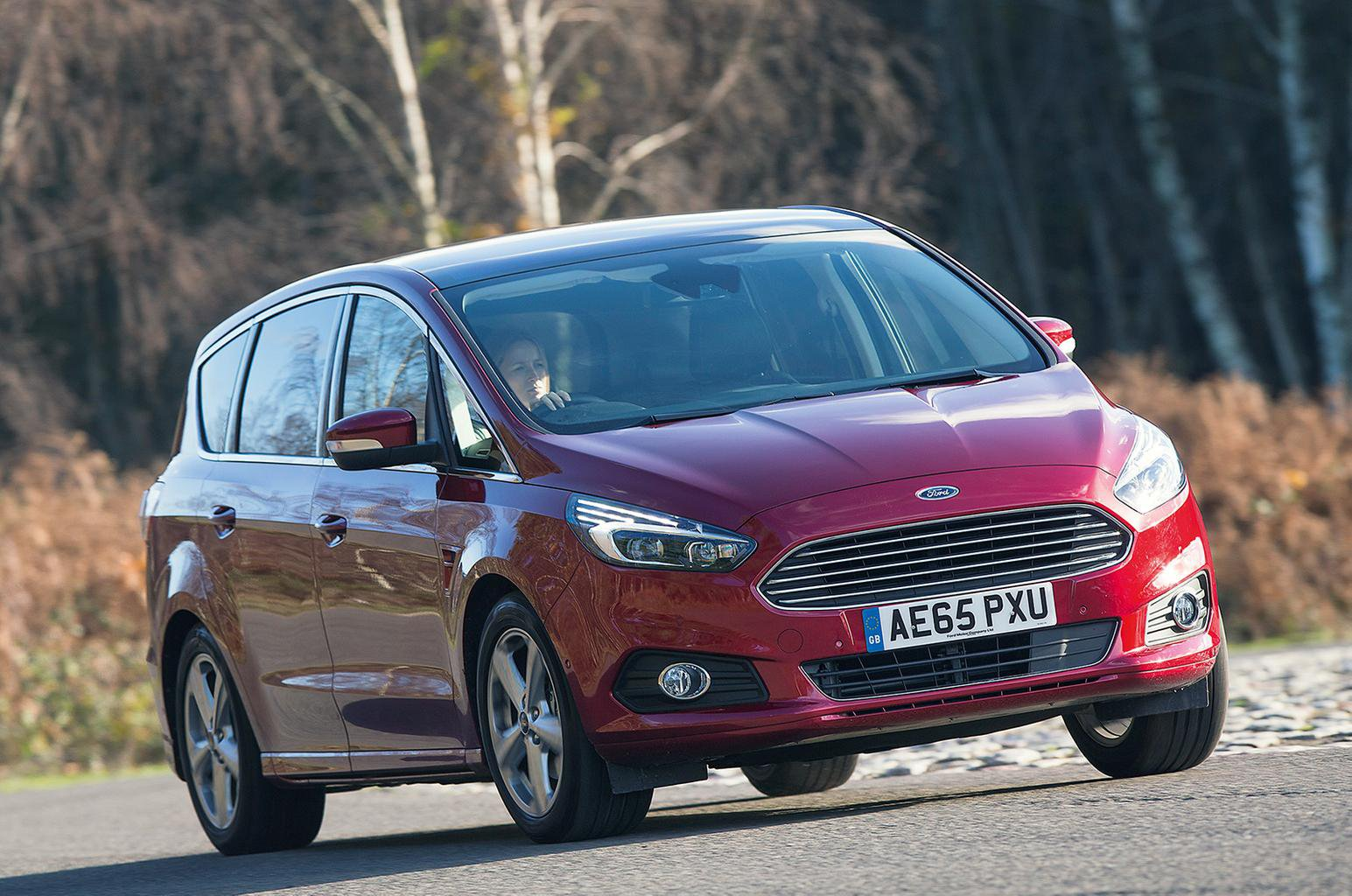 Used Ford S-Max (15-present)