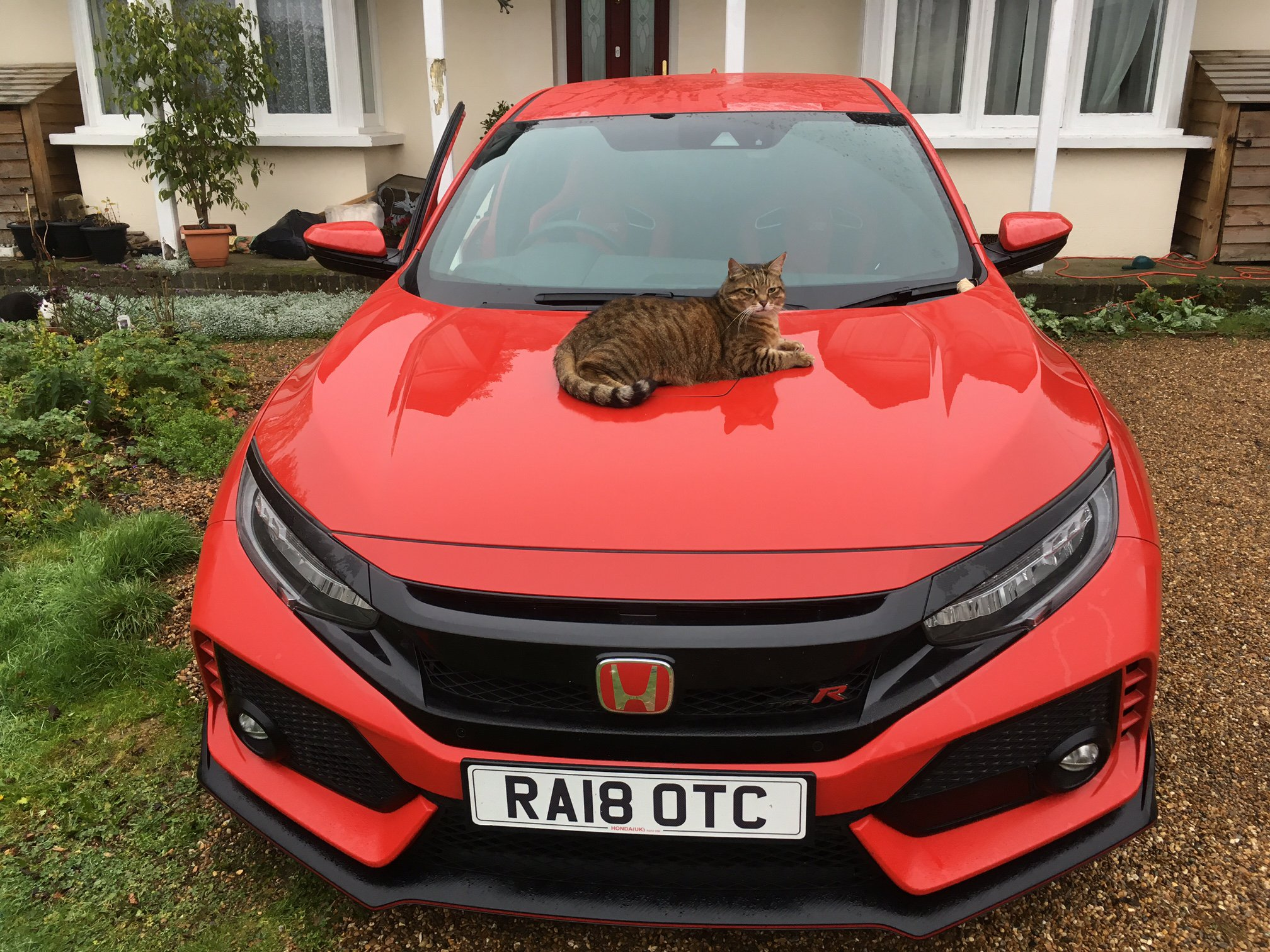 Honda Civic Type R long-termer with Willow 2