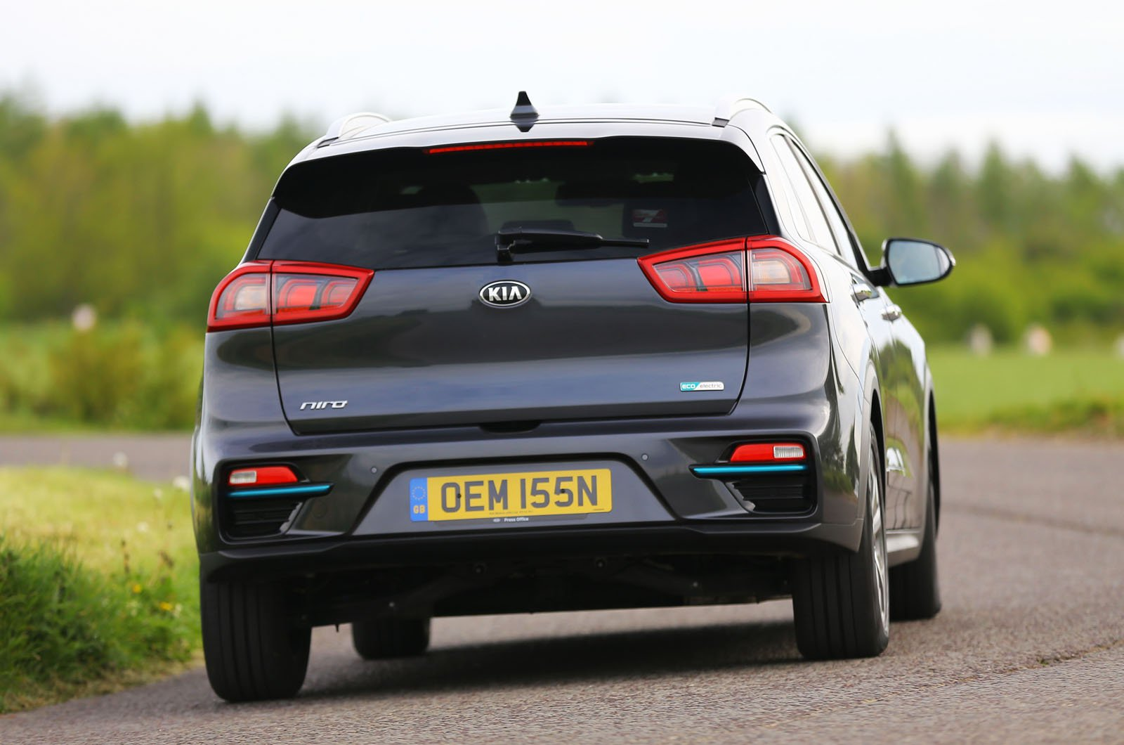 Kia e-Niro rear cornering