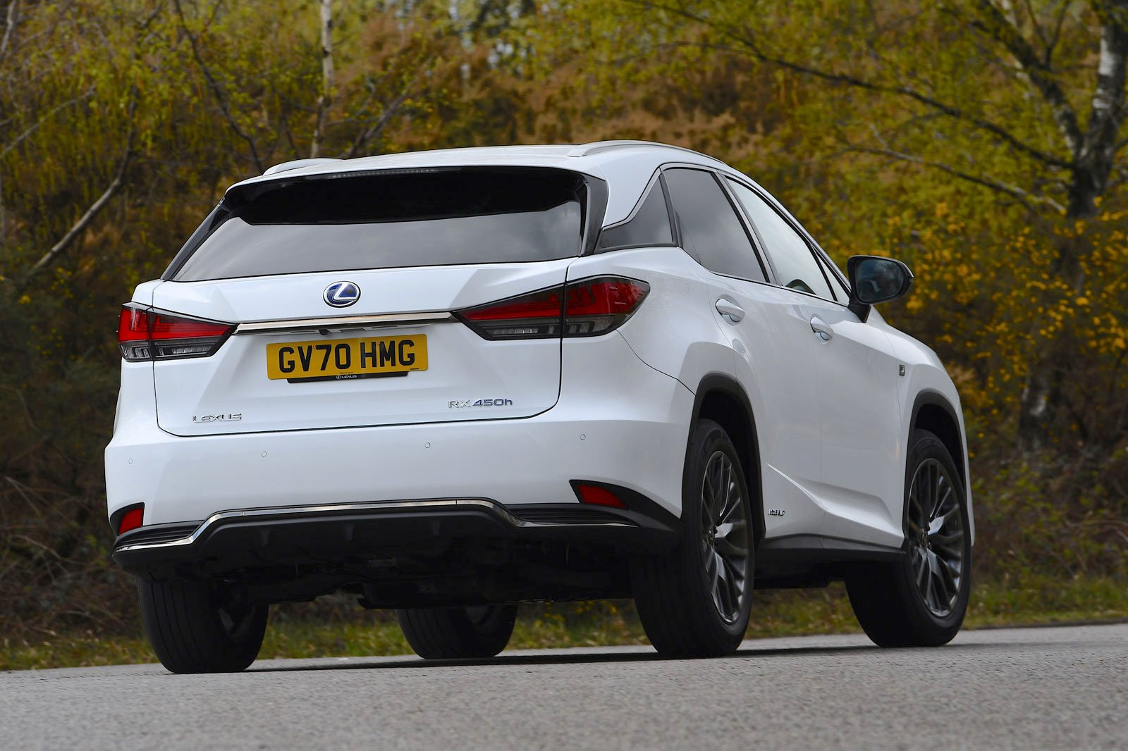 Lexus RX450h 2021 rear cornering