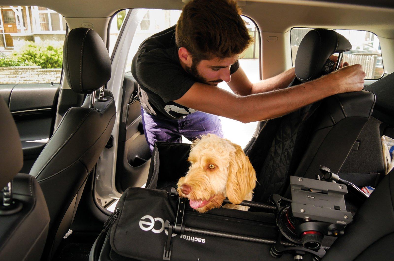 Mini Countryman rear seats and Kiall and dog